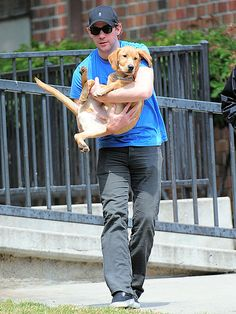 "JOHN KRASINSKI: ""It's a red fox Labrador. I didn't even know that existed,"" he said. ""It's basically a redheaded Lab."" See 10 HOT Guys & Their Pets: http://www.peoplepets.com/people/pets/gallery/0,,20592036,00.html"