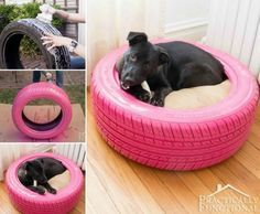 """Pallet beds are cool, but <a href=""""http://www.practicallyfunctional.com/diy-dog-bed-from-a-recycled-tire/"""" target=""""_blank"""">this old tire version</a> is a lot simpler."""