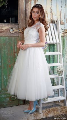 "Amanda Wyatt 2016 Wedding Dresses — Promises Of Love Bridal Collection | Wedding Inspirasi | ""Geena"" -- Beaded Lace & Tulle Tea Length Wedding Gown With V Neckline, Cap Sleeves, Lace Appliqués Throughout Tulle Skirt·····"