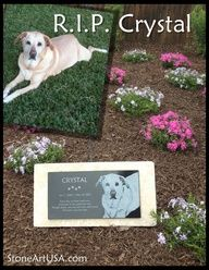 Checkout this amazing deal R.I.P.  Crystal       ... Brought to you in part by StoneArtUSA.com ~ affordable custom pet memorials since 2001,$124.99