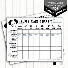 Puppy Feeding Schedule, Puppy Schedule, Kids Schedule, Puppy Day, New Puppy, Dog Whelping Box, Training Tracker, Dog Chart, Dog Grooming Shop