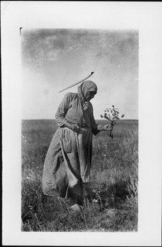 Cecelia Bull Head (the daughter of Goose) - Hunkpapa - circa 1920