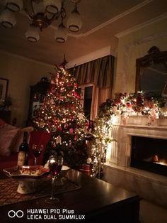 Pretty And Cute, Christmas Tree, Holiday Decor, Pictures, Home Decor, Teal Christmas Tree, Homemade Home Decor, Photos, Xmas Trees