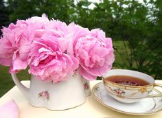 The Nest at Finch Rest: Garden Tea with Pink Peonies