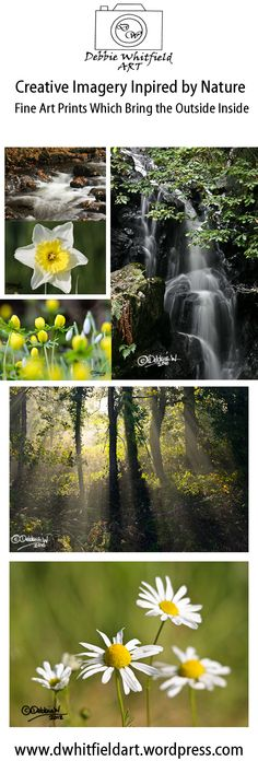 Nature Fine Art Prints Are Available in a Range of Sizes Starting From £6.30 Check Out My Website www.dwhitfieldart.wordpress.com