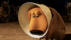 "10. ""I do not like the cone of shame."" -Up  We wish we could hug him through the screen."