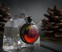 Last day to enter to win the Ammolite Seed of Life Orgonite Pendant! Like the previous post like my page @orgoniks and tag 3 Friends in the comments section below!  Ends tonight! Winner will be announced tomorrow=) Bless!  #orgone #orgoniks #orgonite #healing #love #energy #necklace #crystal #pendantsofig by orgoniks