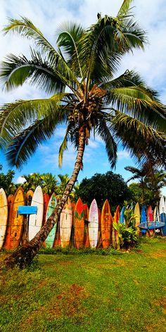 #surfboard fence in Haiku, Maui, Hawaii