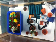 Seeds and plants theme sensory table!