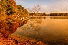 *Sonnenaufgang über dem See*  Früh morgens ist es immer noch am schönsten ...  Tags: Sonnenaufgang #Sonnenaufgang #SechsSeenPlatte #deGrasi #onLocation #Duisburg #Lake #See #Sonne #Sky #Landschaft #Sommer #GutenMorgen #wachauf #Landscare