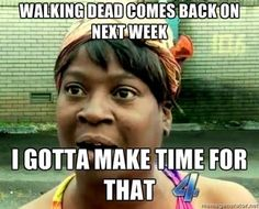 Walking Dead Fans - By Sierra  (walking dead,ain't nobody got time for that,meme,lol,funny)