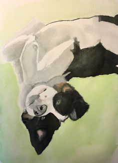 This way up? #art #dog #watercolour