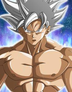 Goku Ultra Instinct - Mastered, Dragon Ball Super Goku Y Vegeta, Dbz, Dragon Ball Gt, Akira, Super Manga, Goku Ultra Instinct, Death Parade, Rwby Anime, Pokemon