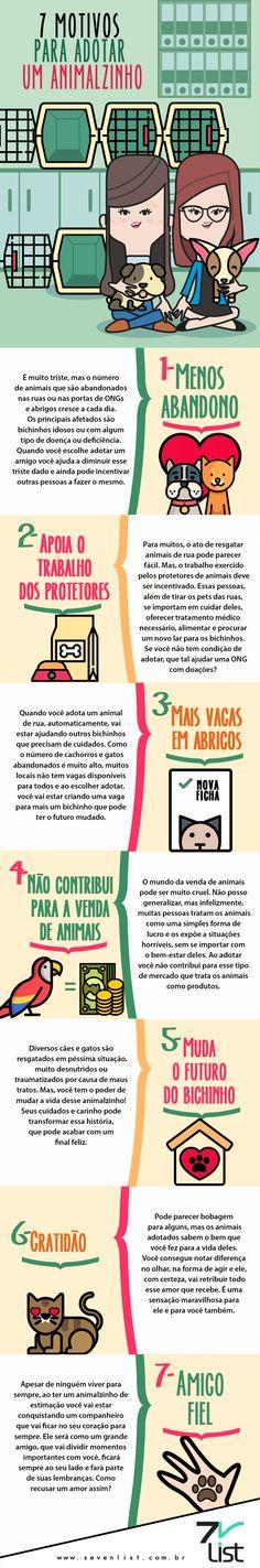 7 motivos para adotar um animalzinho