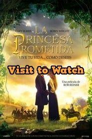[HD] La princesa prometida 2019 Pelicula Completa en Español Latino Good Comedy Movies, Top Movies, Streaming Sites, Hd Streaming, Online Gratis, Movie Posters, I Promise, Live Life, Princesses