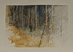 LANDSCAPES IN WATERCOLOR - E. Verdine