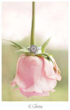 upside down pink rose & wedding ring