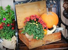 fall-decor-pumpkin-flowers-front-porch