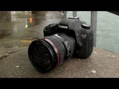the Canon EOS 7D paired with the Canon EF 24-105mm f/4 L IS USM Lens