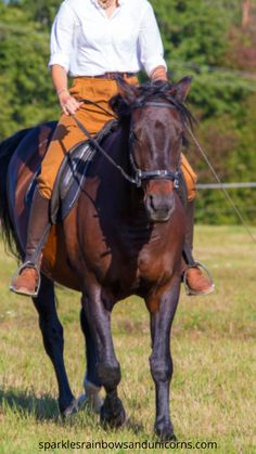 This is a super quick horse riding informative blog post about the opening rein. What it is and how to do it.You can go check out the blog post through the link. Then comment below have you used an opening rein while riding before? Horse Riding Tips, Western Riding, Riding Lessons, English Riding, Horse Photography, Horseback Riding, Beautiful Horses, Equestrian, Link