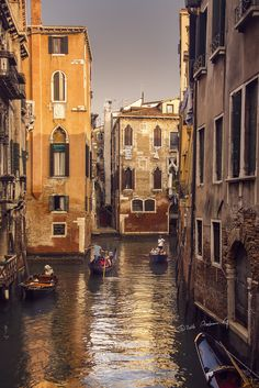 Venice in gold - null