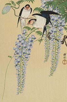 "Japanese Art Print ""Wisteria and Swallows (Fuji no Tsubame)"" by Ohara Koson. Shin Hanga and Art Reproductions http://www.amazon.com/dp/B016W0SV98/ref=cm_sw_r_pi_dp_iXxswb0YGM6C3"