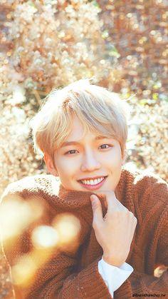 Im Youngmin Produce 101, K Pop, Kim Donghyun, Boys Wallpaper, Kim Hongjoong, Na Jaemin, Pop Group, Korean Singer, New Music