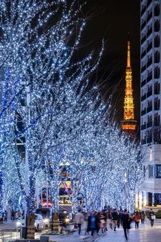Hanging Christmas Lights, Decorating With Christmas Lights, Aesthetic Japan, Travel Aesthetic, Colourful Wallpaper Iphone, Tokyo Skyline, Japan Landscape, Tokyo Night, Celebration Around The World