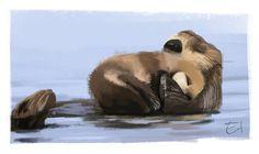 Otter sketch