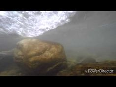 """GoPro HERO 4 silver: Under water small test"" Video #110 - YouTube"