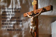 Mateo 10,22