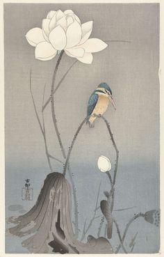 IJsvogel bij lotusbloem, Ohara Koson, 1900 - 1945