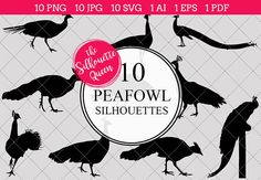 Peafowl Silhouette Vector Graphics includes PNG files with transparent backgrounds at The PNGs are approximately 10 inches at it's widest point. Pine Tree Silhouette, Silhouette Clip Art, Girl Silhouette, Animal Silhouette, Black Silhouette, Silhouette Studio, Animal Cutouts, Shape Templates, Printable Animals