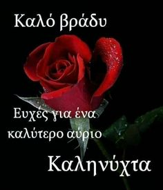 Rose Flower Pictures, Good Night, Greek, Quotes, Decor, Nighty Night, Quotations, Decoration, Decorating