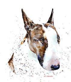Pitbull Terrier The Boss Bull Terrier Print Watercolour - This print is from an Original painting by Eddie Kagimu MATERIALS: quality heavy-weight cotton mould printing paper The Print is signed by the Artist Perros Bull Terrier, Bull Terrier Dog, Bull Terrier Tattoo, Pitbulls, Norfolk Terrier, English Bull Terriers, American Pit, Beautiful Dogs, Dog Art