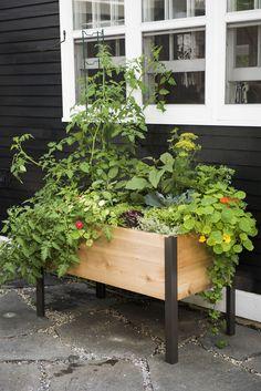Grow Box: 2' x 4' Elevated Cedar Planter Box   Made in Vermont