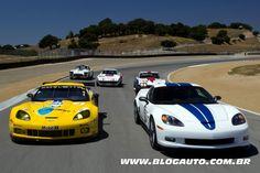 Chevrolet Corvette 2010 Racing Le Mans 50th Anniversary