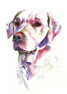 Jane Davies Watercolours - dogs