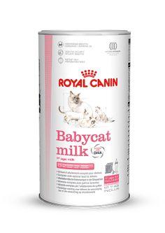 Babycat Milk - Für #Katzenwelpen von der #Geburt bis zum 2. Monat. Für ein stetiges, harmonisches #Wachstum. Die Zusammensetzung von #Babycat #Milk enspricht annähernd der #Zusammensetzung #natürlicher #Muttermilch mit hohem #Energie- und #Proteingehalt. http://www.royal-canin.de/katze/produkte/im-fachhandel/nahrung-nach-mass/aufzucht/babycat-milk/eigenschaften/