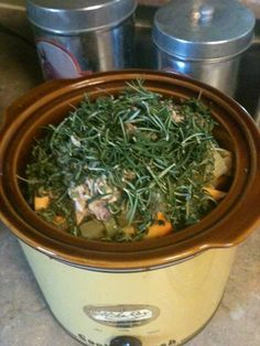 Herbed Chicken and Squash - Crock Pot Recipe