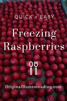 Raspberries are such a perfect berry to freeze.plus, they are so handy to use for jams, smoothies, fruit kefir and salads! Try freezing some today! Canning Food Preservation, Preserving Food, Frozen Meals, Frozen Fruit, Freezing Fruit, Growing Raspberries, Dehydrated Food, Freezer Cooking, Cooking With Kids