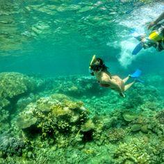 Snorkling karimunjawa #karimunjawa #wonderfulindonesia
