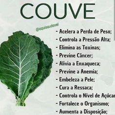 Couve - www. Kale Benefits, Dieta Online, Carbohydrates Food List, Feed Insta, Dietas Detox, Light Diet, Health Eating, No Carb Diets, Food Lists