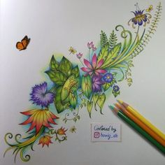 #latenight #coloringactivity #adultcoloringbook #magicaljungle #johannabasford #prismacolor #prismacolorpencils #crayola #coloringbook #coloring #stressrelief #relaxing #butterfly #colours #colors