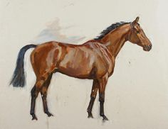 Peter Biegel (1913-1988).  Study of a Chestnut Horse. Oil on canvas, 46 x 56 cm.