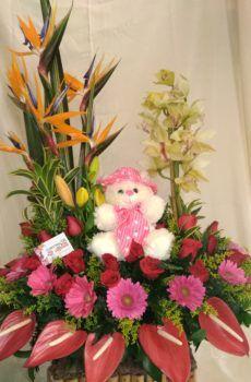 Productos – Floristeria la Maria Flower Arrangements, Flowers, Plants, Large Flower Arrangements, Floral Motif, Spirals, Sky, Products, Roses