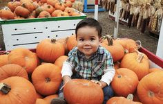 Best pumpkin patches in Los Angeles: Tapia Brothers Farm