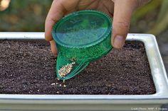 Découvrez nos conseils pour réussir vos semis à coup sûr. Stocker, couvrir, arroser, récolter… Voici les différentes étapes à suivre.