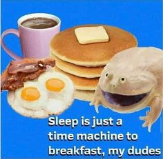 Dankest Memes, Funny Memes, Cute Frogs, Meme Lord, Literally Me, Lose My Mind, Wholesome Memes, Stupid Funny, Really Funny