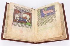 Westminster Abbey Bestiary (Ms. 22 › Westminster Abbey Library) Out of all the Bestiaries, the Westminster is considered to be one of the most beautiful and richly decorated bestiaries in the world, and is full of all kinds of incredible descriptions, legends and myths.